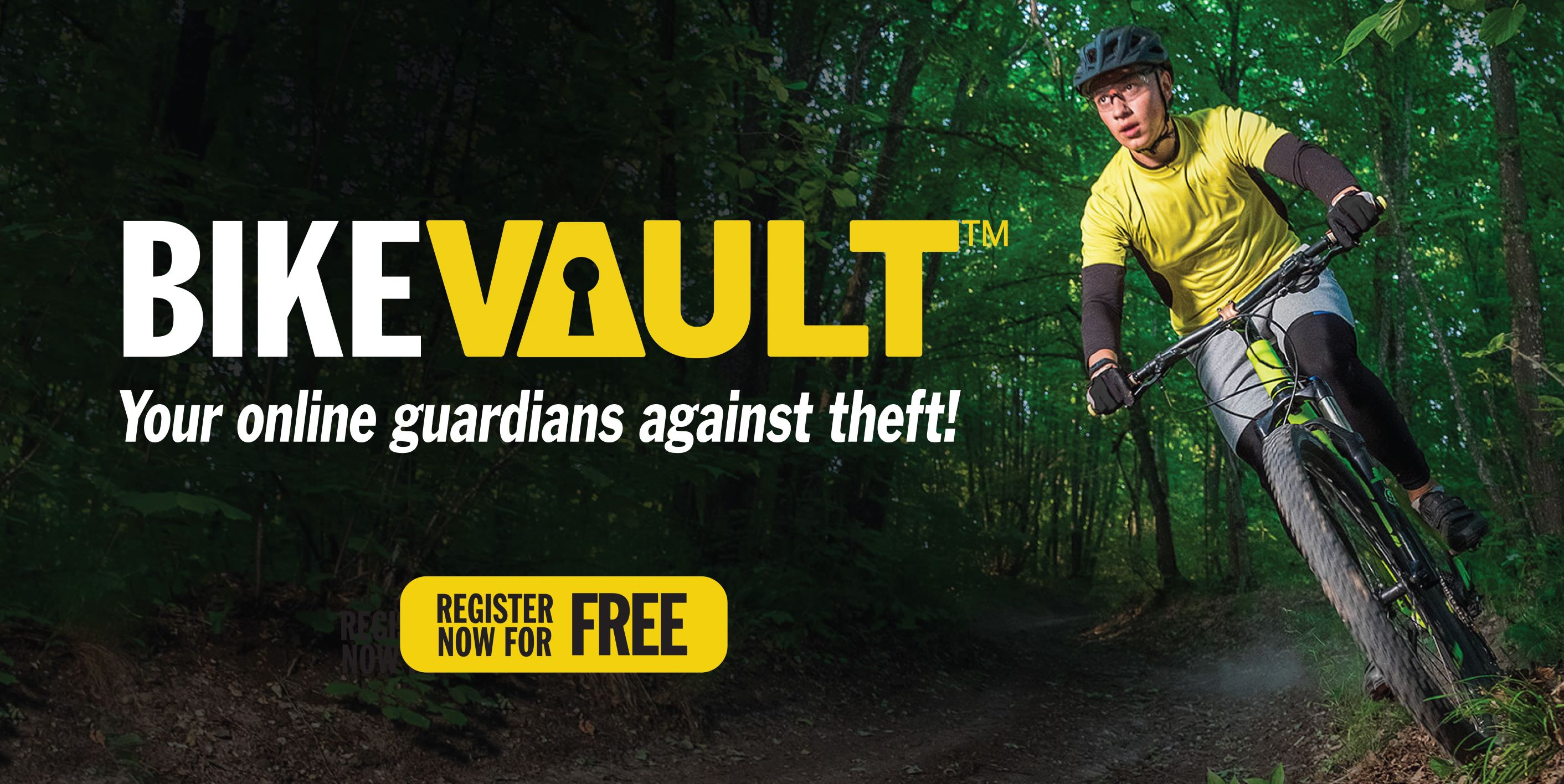 BikeVAULT banner image - Mountain bike rider on a trail